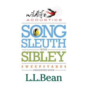 "Wildlife Acoustics and L.L.Bean Launch ""Song Sleuth with Sibley"" Sweepstakes"