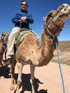 Mountain Khakis Trail Creek Pants Versus Camel