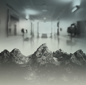 Mountain in the Hallway a Film by Teton Gravity Research