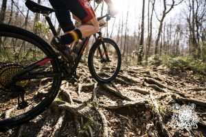 Saddle Up for the 11th Annual Pisgah Stage Race